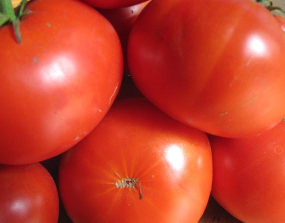 Tomato: Greek Asimina