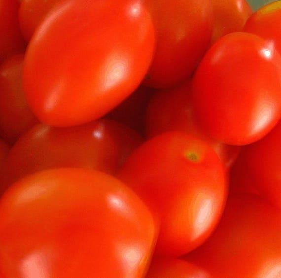 Grappoli d'Inverno Tomato