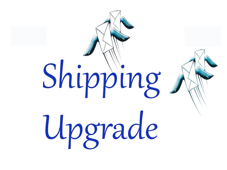 SHIPPING & SHIPPING UPGRADE image 0