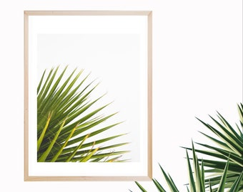 Palm Branch Printable Art