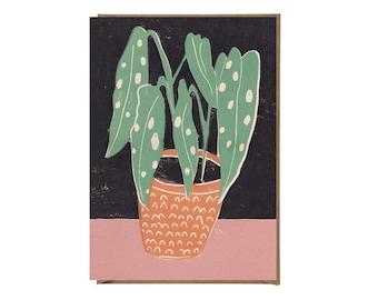 Art Card - Greeting Card - Still Life - Birthday Card - Houseplant - Plant - Begonia