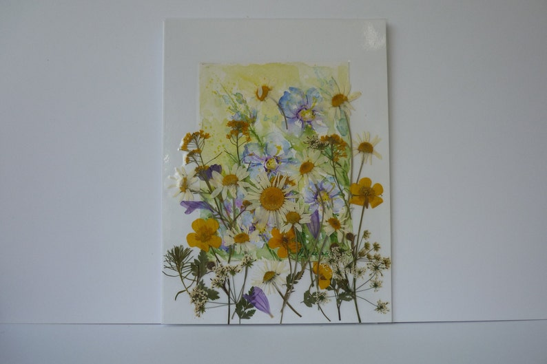22 Pressed//Dried Flower Real Daisy Pansy Scrapbook Craft Wedding Card Making