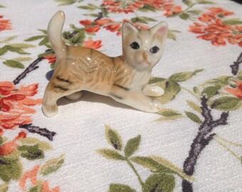 Miniature cat