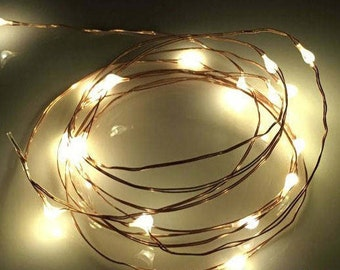 Fairy Lights 20 LED Lights Battery Operated (Included) Fairy Garden, Garden Party, Wedding Lights, Copper Wire Lights, Indoor Outdoor