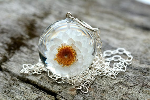 in the resin ball on a silver chain Pendant with natural white cherry flower Chain 80 cm. Sphere 3 cm Prunus sp.
