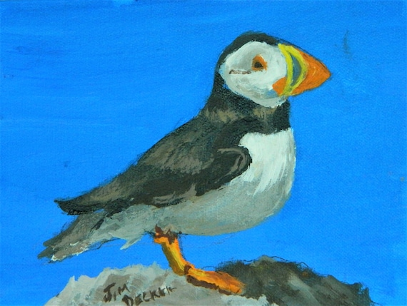 Puffin , Sea Bird, Colorful Bird