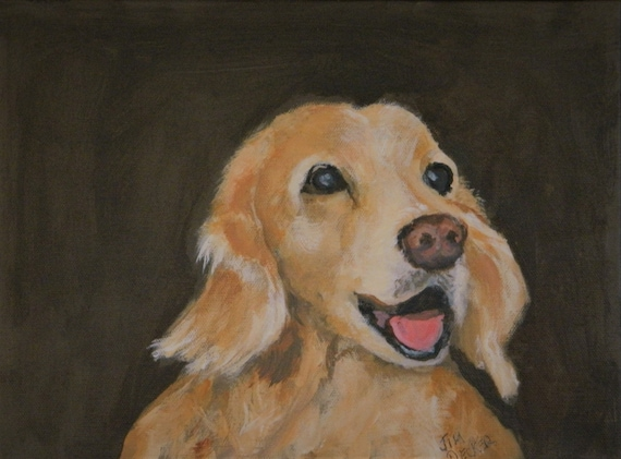 PET PORTRAIT  Golden Retriever