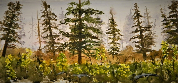 PINE TREES ,Misty Background, Sunlight, Woodlands, Watercolor Painting Jim Decker