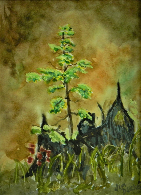 WOODLAND PAINTING { New Beginnings } Original Watercolor  11 x 14  By Jim Decker