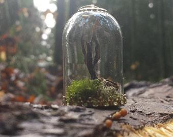 Miniature lichen ornament