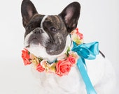 Flower Dog Collar for Weddings - 'Coral Rose Design' - coral, peach, teal