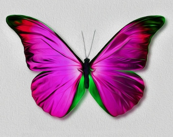 d58f70ee6c21 Satin Bird Wing Blue Morpho Butterfly Purple and Pink Bright