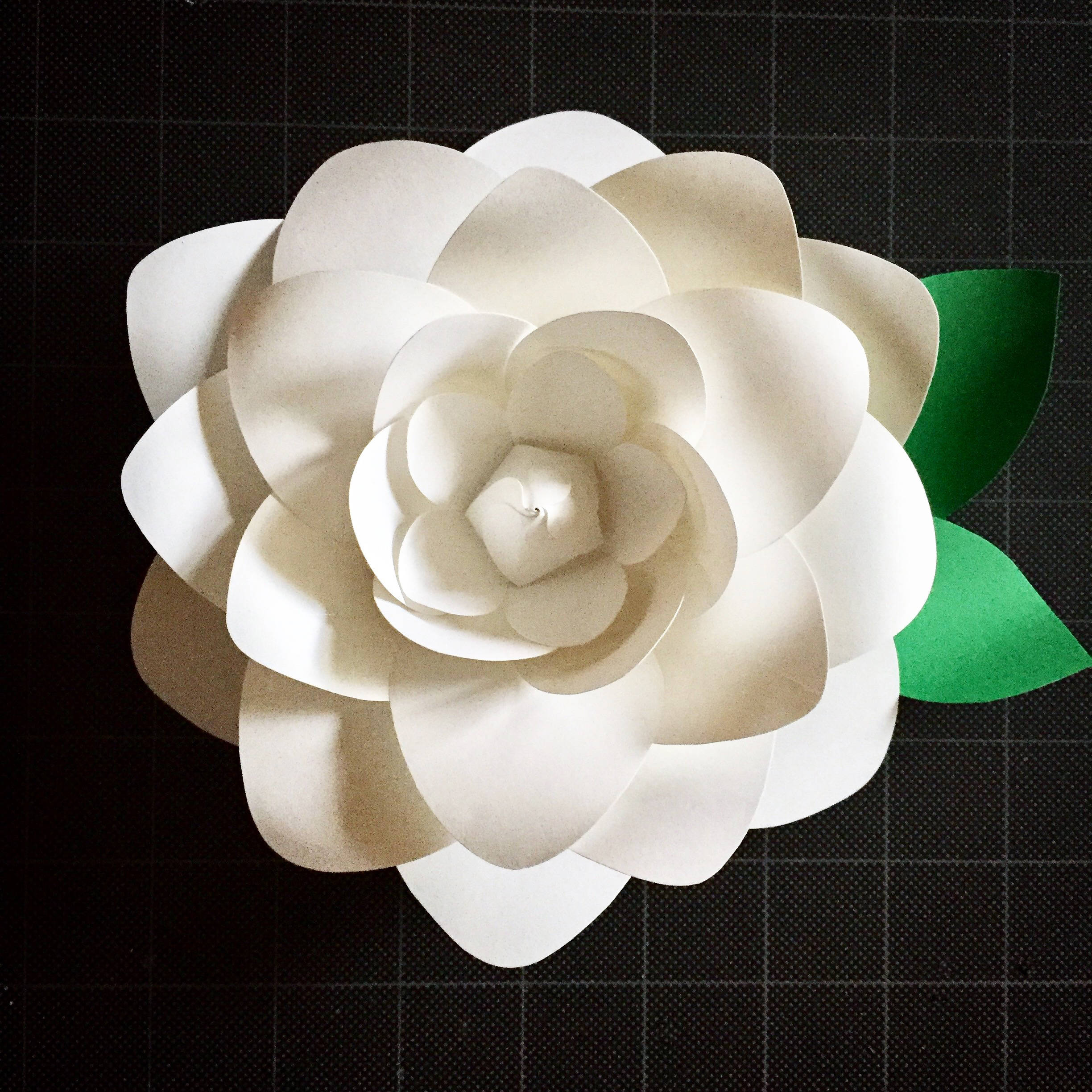 paper flower gardenia template digital download pdf and