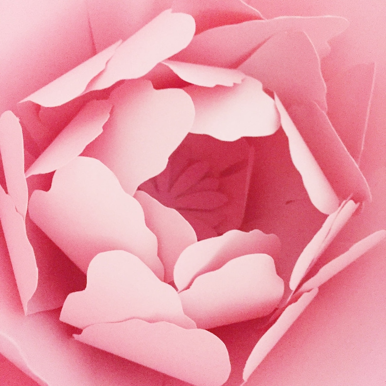 Peony Paper Flower Template Pdf And Svg Giant Paper Flower Diy