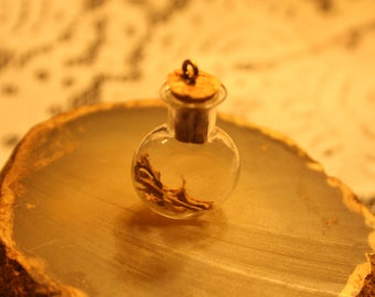 Mouse Bones Corked Bottle Necklace