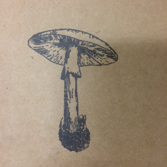 poison mushroom notepad, Perfect travel journal, sketchbook, or for writing, great gift for him
