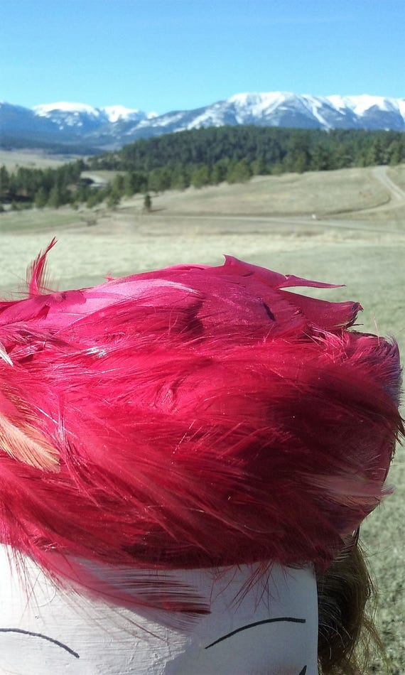 1950s Hot Pink Feathered Pillbox Hat - image 4