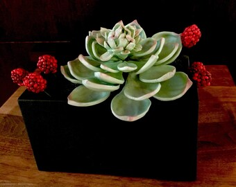 Sugar flowers-gumpaste succulent with berries for wedding cake decorations
