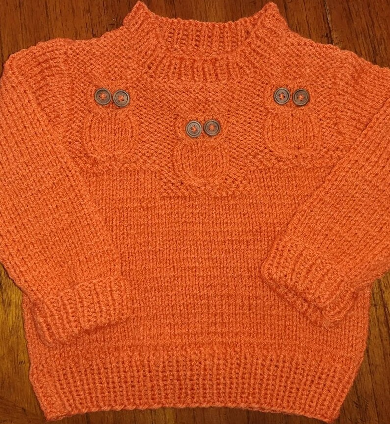 bd0ce012bd31 OWLS HOOT HOOT Hand Knit Baby Sweater Sporting 3 Wide Eyed