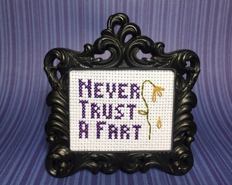 Never Trust A Fart MINI Finished Cross Stitch in choice of image 0