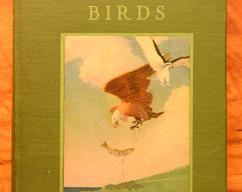 The Human Side of Birds by Royal Dixon