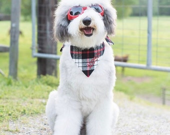 Flannel Plaid Dog Bandana in White, Black, and Red.  We have 20 Flannel Plaids in stock!