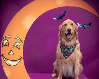 Trick or Treat Halloween Dog Bandana, Pumpkins and Ghosts Pet Bandana