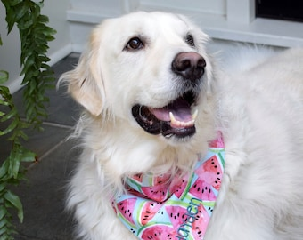 Watermelon Dog Scarf, Personalized Dog Bandana with Watermelon, Reversible Pet Scarf