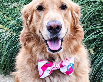 Monogram Summer Bow Tie - Small Medium Large Personalized Puppy Dog Bowtie - Best Custom Puppy Dog Gift by Three Spoiled Dogs