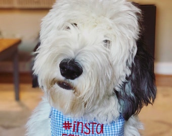 Hashtag Insta Famous Dog Bandana || Custom Reversible Classic Tie Pet Scarf || Puppy Dog Gift by Three Spoiled Dogs