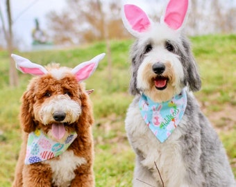 Easter Dog Bandana | Personalized Pet Bandanas | Classic Tie Pet Scarf with Easter Bunnies | Custom Puppy Gift