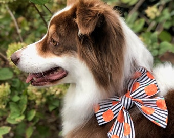 Pumpkin Bow Tie, Preppy Girl Bow, Sailor Bow for the Girls, Pet Bows for every day