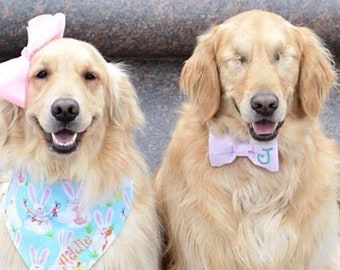 Personalized Easter Dog Bandana | Easter Bunnies Spring Pet Scarf | Reversible Spring Scarf with Bunny | Puppy Dog Gift