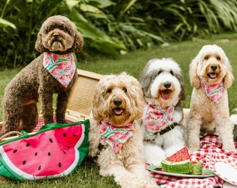 Dog Scarf, Dog Bandana, Personalized Dog Bandana with Watermelon, Size Extra Extra Small to Extra Large, Reversible, Pet Accessories