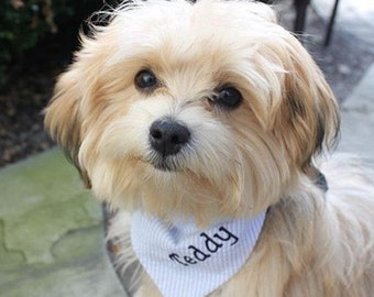 Personalized Seersucker Bandana, Monogrammed Dog Bandana,  Personalized Pet Neckerchief,  Wedding Accessory for Dog