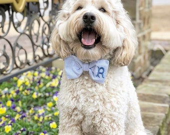 Personalized Seersucker Bow Tie, Monogrammed Dog Bow Tie for Weddings, Special Occasion Dog Bow Tie, Cat Bow Tie