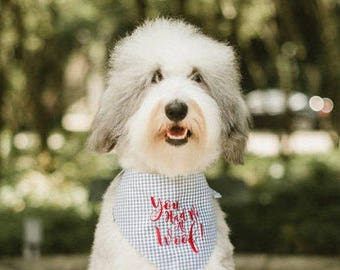 Personalized Dog Bandanas - Free Hugs! Reversible Green Gingham Pet Scarf - Best Custom Puppy Dog Gifts by Three Spoiled Dogs