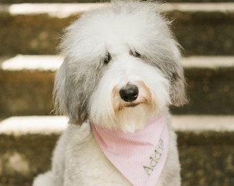 Seersucker Dog Bandana, Monogrammed Pet Bandana, Dog Gift, Personalized Pet Neckwear, Pet Accessories, Classic Tie, Dog Wedding, Girl Dog