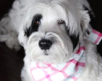 Personalized Flannel Dog Bandana || Pink White and Turquoise Plaid Pet Scarf ||  Puppy Gift by Three Spoiled Dogs