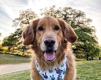 Spring Easter Bunny Dog Bandana || Spring Bunnies in shades of Blue Personalized Pet Scarf || Puppy Gift by Three Spoiled Dogs