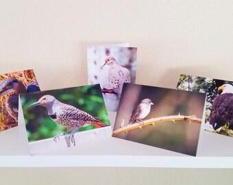 Bird photo cards, Set 1