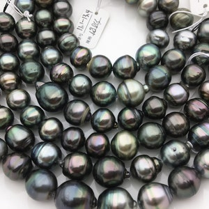 Spotted High Luster Darker Gray Slight Cherry Overtones Free Shipping Round Shaped 16.4 mm Undrilled Large Loose Tahitian Pearl