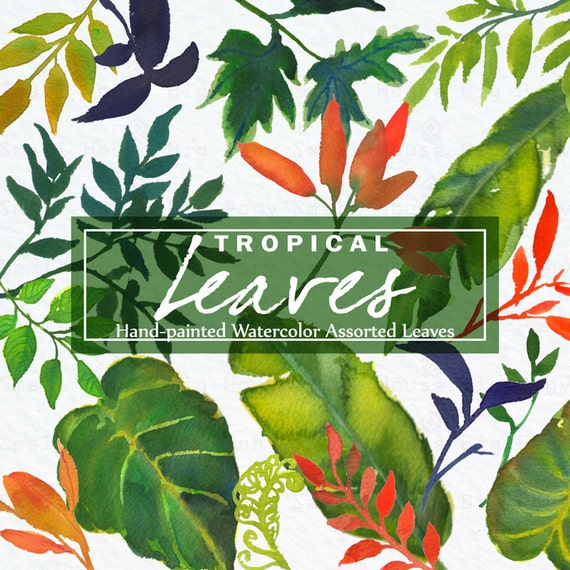Watercolour Tropical Leaves Clipart. Handmade, watercolour clipart, wedding diy elements, leaves - Tropical Leaves