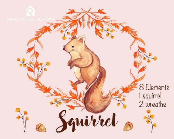 Digital Clipart- Watercolor Flower Clipart, squirrel Clip art, Floral Wreath Clipart, cute animal clip art- Squirrel