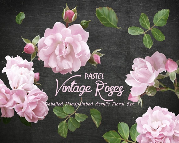 Digital Clipart- Acrylic Flower Clipart, rose Clip art, Floral Bouquet Clipart, wedding flowers clip art- Pastel Vintage Roses