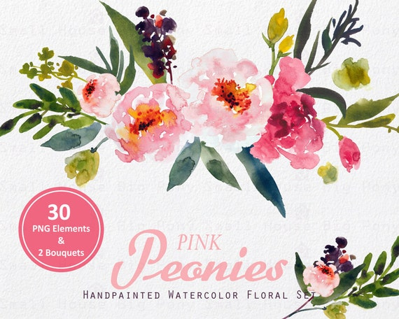 digital clipart watercolor flower clipart peonies clip art etsy