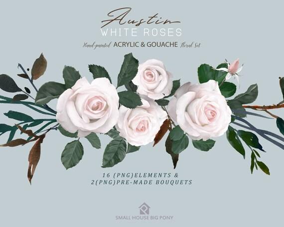 Watercolour Flower Clip Art Collection - Hand Painted Graphics, flower,  hand drawn clip art,  flower clip art - Austin White Roses Elements