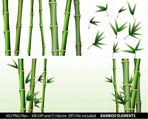 Bamboo Clipart Pack: bamboo Clip Art, short and tall bamboo Clip Art , Design Graphics, Create your own background