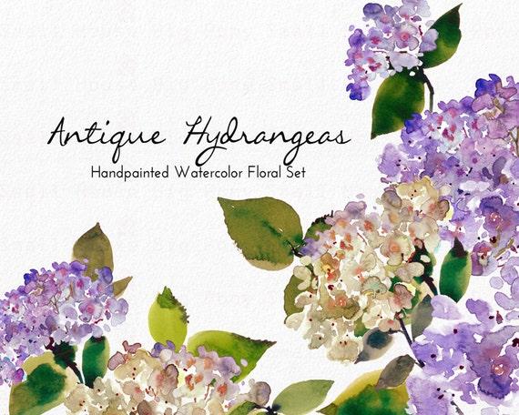 Digital Clipart- Watercolor Flower Clipart, peonies Clip art, Floral Bouquet Clipart, wedding flowers clip art- Antique Hydrangeas