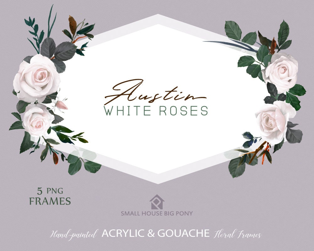 Watercolour Flower Frames Set Hand Painted Graphics White Rose